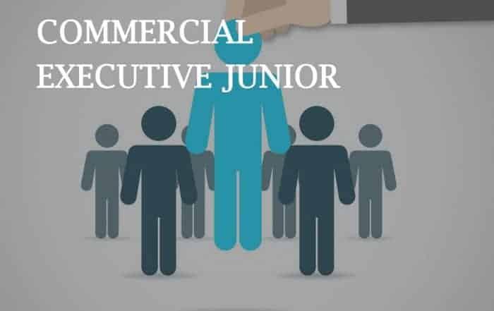 Ejecutivas/os Comercial Junior en Madrid, Barcelona y Valencia