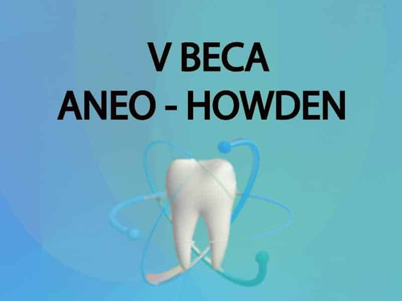 ANEO Howden